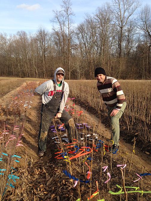 Aziz and Jim tagging seedlings