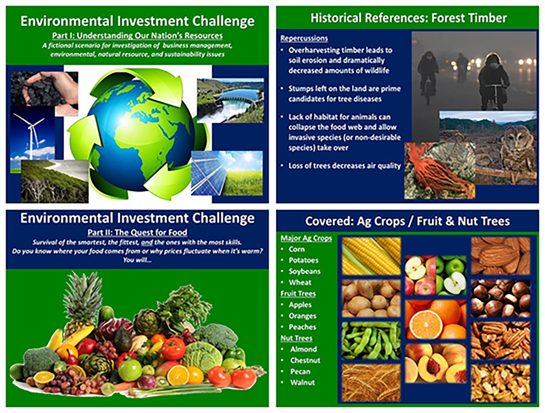 Investment Challenge