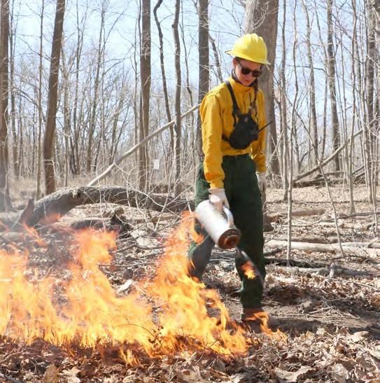 Image of Skye Greenler doing a burn