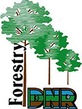 Indiana Department of Natural Resources, Division of Forestry