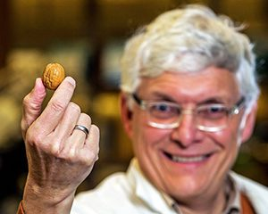 Woeste holding a black walnut