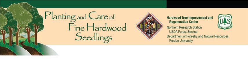 Planting and Care banner