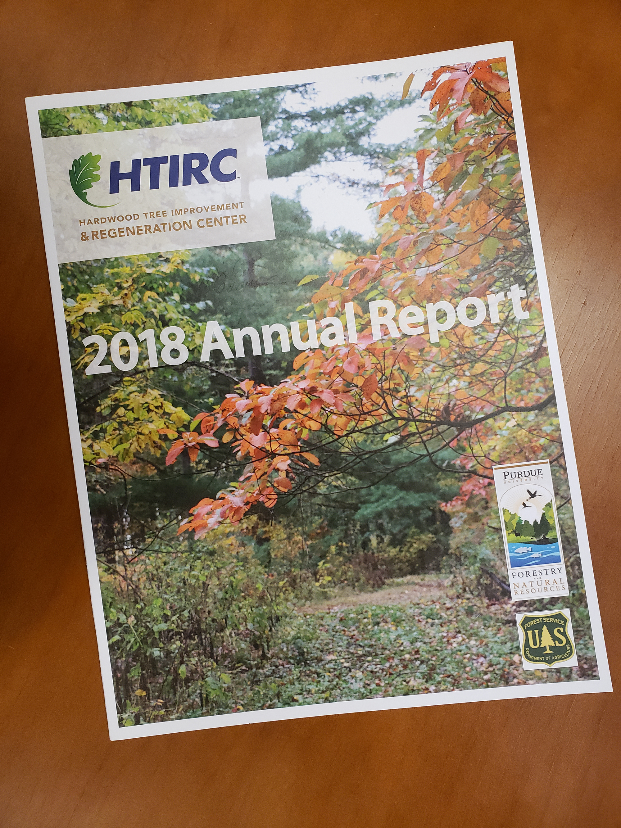 Image of the Annual Report front page